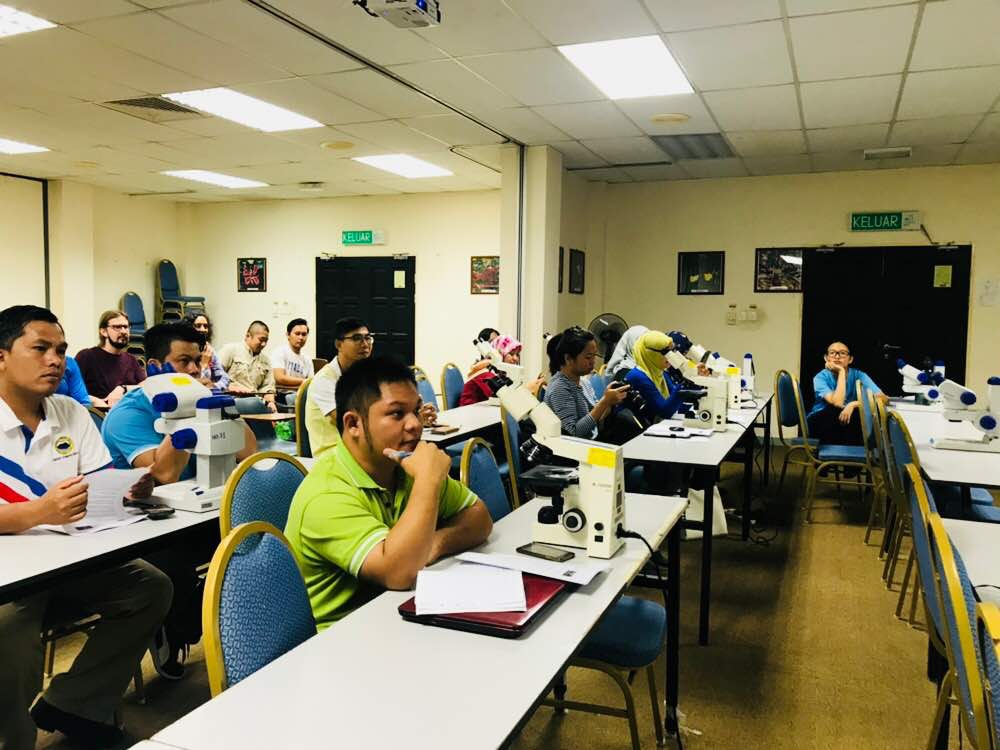 Workshop on endophytes and lichens organized at UMS, Kota Kinabalu (Participants).